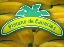 Caciques canarios